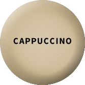 color-swatch-cappucino